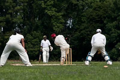 Cricket-5186