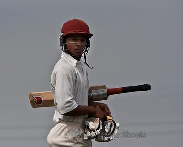 Cricket-5197