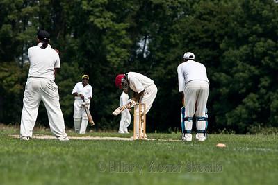 Cricket-5185