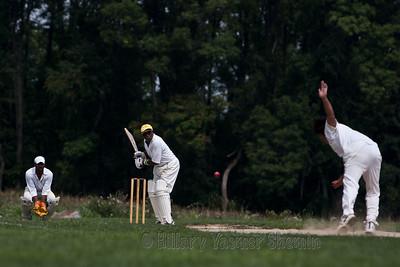 Cricket-5193