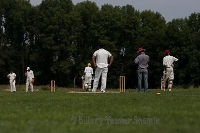 Cricket-5189
