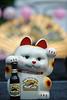 100411_Cherry-Blossom_0002-5
