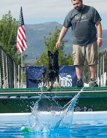 SPLASH DOGS 2013