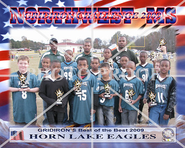 10X8 GRIDIRON EAGLES