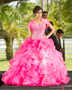 Spectacular Sweet Quince-856