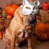 PV_SWM_Halloween_02