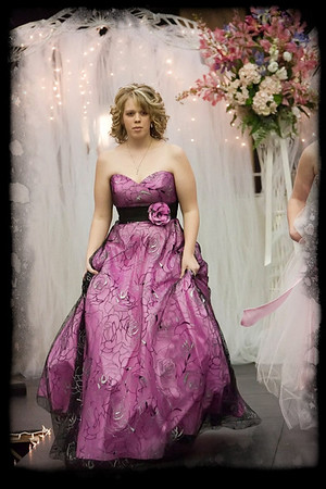 053_Bridal Fair 013011_9582 jpg