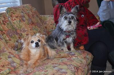 Chika & Murphy