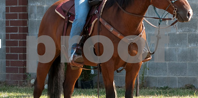 Clark Co Saddle Club Trail -349