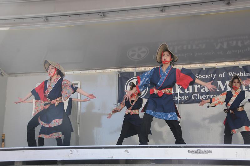 Festival-141