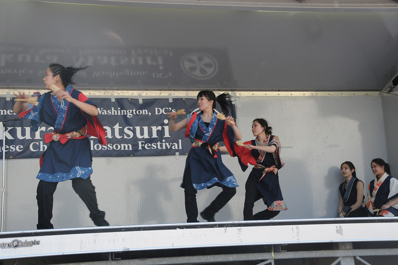 Festival-185