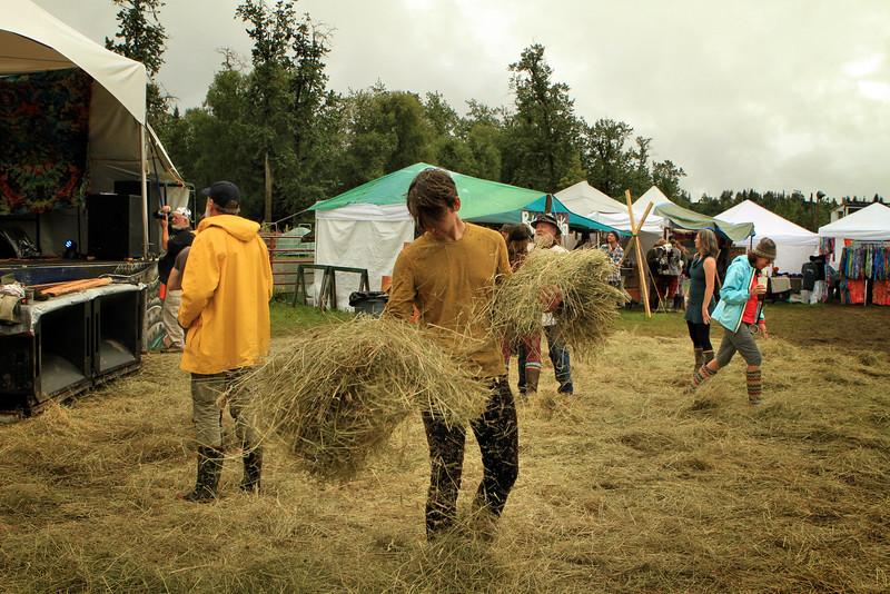 More hay