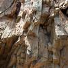 Rock Texture at Eldorado Canyon State Park
