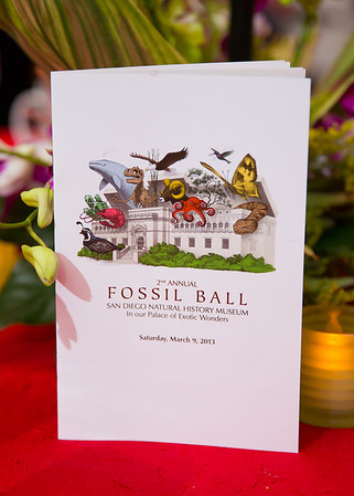 San Diego Natural History Museum Fossil Ball 2013