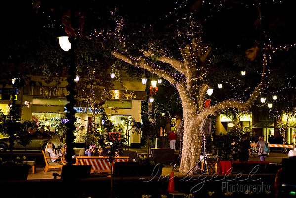 Santana Row's 8th Annual Tree Lighting Ceremony