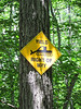 Dangers of Hiking
