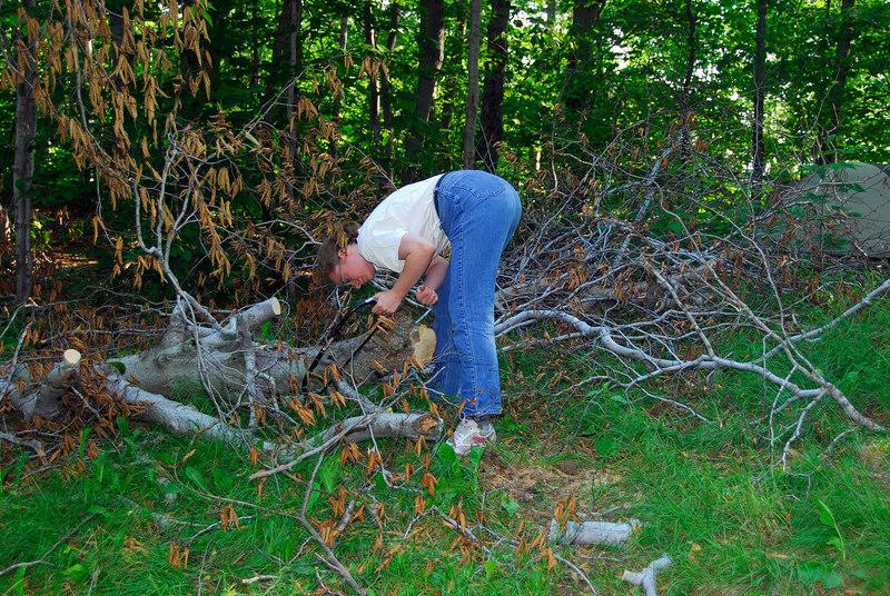 <b>Darleen works on cutting up the fallen tree</b>   (Jul 03, 2006, 08:15am)