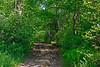 <b>Busby Trail to Spruce Hill</b>   (Jul 03, 2006, 10:32am)