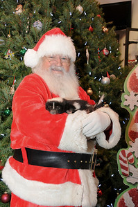 "It just wouldn't be ""Pictures with Santa"" without Penelope, the most well known skunk in Schuylkill County stopping by for a visit."