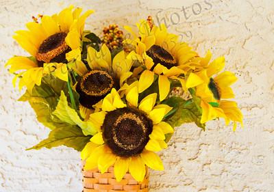 Sunflowers 1711