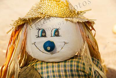 scarecrow 1717