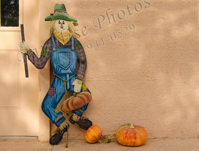scarecrow & gourds 1715