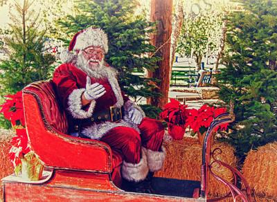 Santa in sleigh HD1755