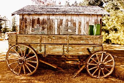 Wagon brown 1573BBypas