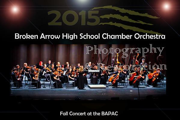 2015 BA Orchestra Fall Concert