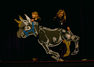 2012 3-29 Cow-A-Cow-A-Bunga-4096