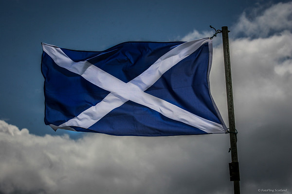 The Saltire flying high
