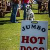 Hot Dog (Dalmation)