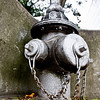 Fire Hydrant along Peachtree Street in Buckhead