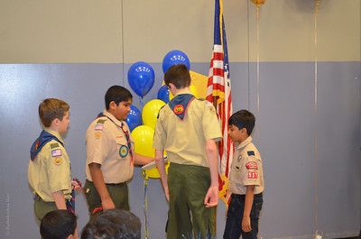 Pack 557 Crossover