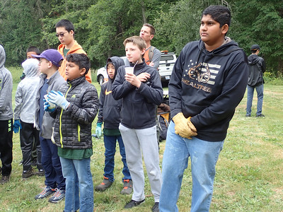 Troop 591 Service Project At Big Finn Hill Park
