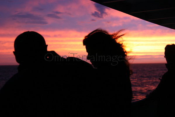 Sea Change, Reversing the Tide, & Ocean Alliance Sunset Whale Watch..... All photo proceeds go to Ocean Alliance.