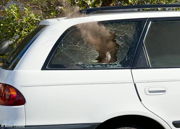 Seatoun Car Fire 2011