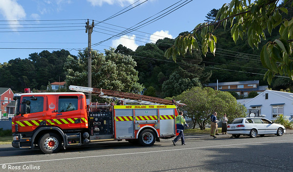 Seatoun Car Fire, Ludlam Street, Wellington, 14 March 2011