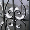 seattle-snow-2010-7706