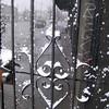 seattle-snow-2010-7703