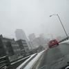 seattle-snow-2010-7697