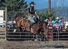 Saddle Bronc Riding - 2