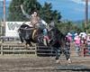 Bareback Riding - 2