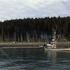 Artic Fox tow haul