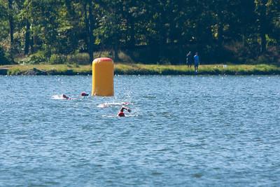 swim:run 13 028