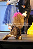 Seussical the Musical 4-21-16-1193