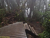 End of walkway. This is the beginning of a very messy trail. This is the Gn Irau trailhead.