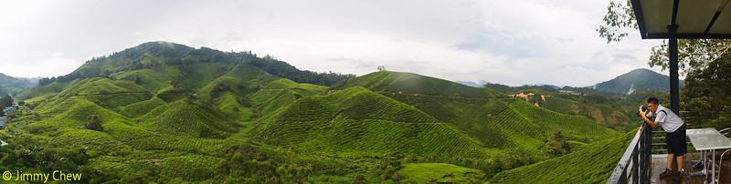 Pano shot of tea plantation. In this photo: Alex.