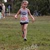 Shamrock 10 Miler & 5 K, 03-15-09 :     Enter your race number:  Race:  Shamrock Run