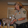 Pictures of the fawn were not taken by me. Photographer unknown! Lol  :)